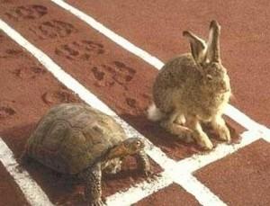 lievre-et-la-tortue